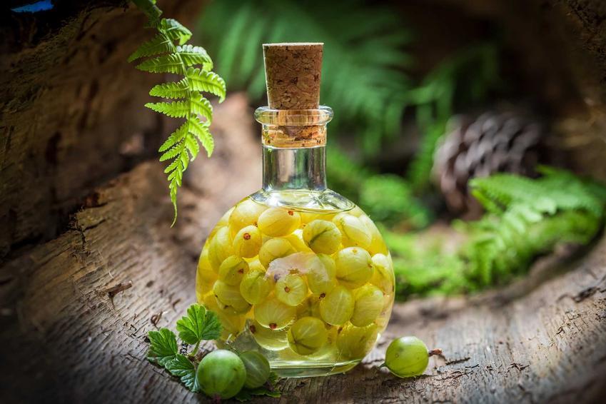 Nalewka z agrestu w butelce z korkiem oraz owoce agrestu i przepis na nalewkę agrestową na spirytusie krok po kroku