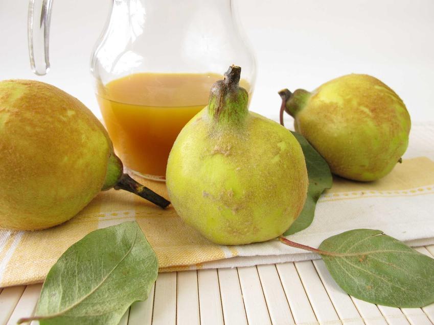 Wino z pigwy w szbanku oraz świeże owoce pigwy, a także wino z owoców pigwowca, najlepsze receptury i składniki