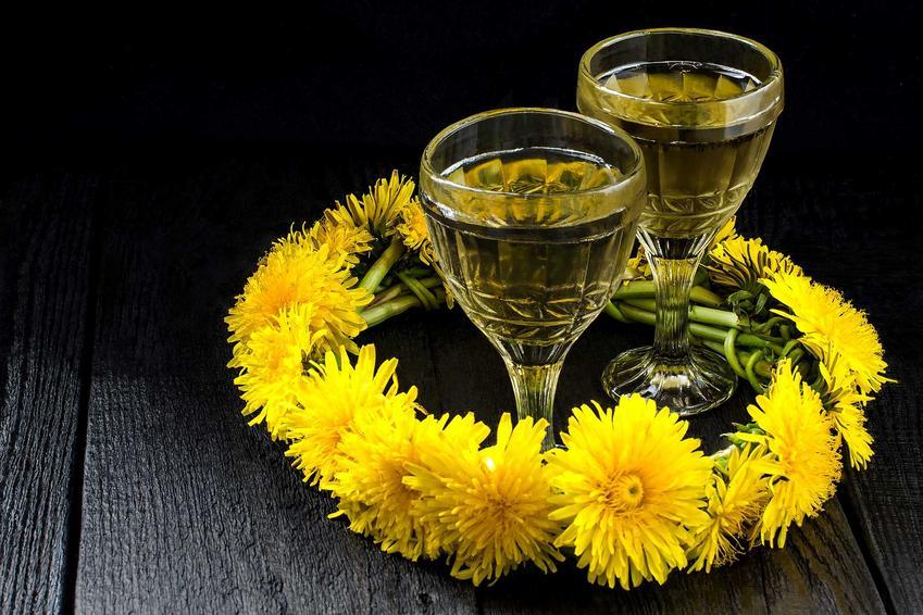 Wino z mniszka lekarskiego czy też wino z mleczy w kieliszkach oraz wianek z mleczy, a także przepisy krok po kroku