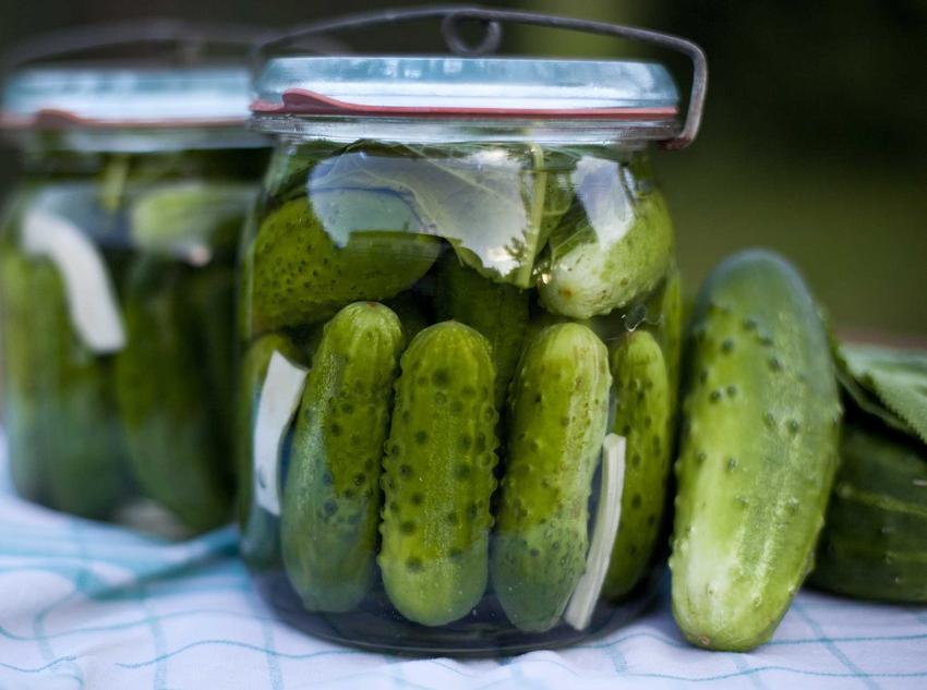 Domowe ogórki kiszone oraz przepisy na inne przetwory na zimę z owoców i warzyw, na przykład przetwory z fasolki szparagowe