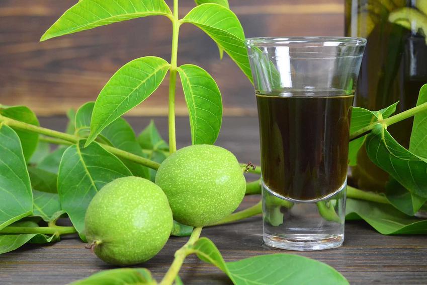Orzechówka na spirytusie, a dokładniej nalewka z zielonych orzechów w kieliszku oraz przepis na orzechówkę z zielonych orzechów
