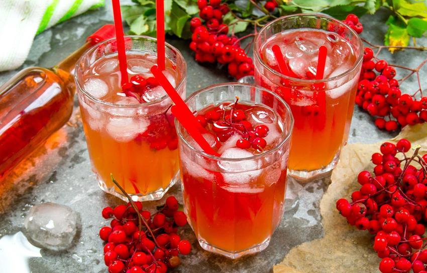 Sok z jarzębiny w szklankach oraz wino z jarzębiny i jarzębina czerwona, a także jej właściwości lecznicze i przepisy