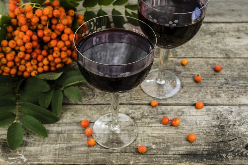 Wino z jarzębiny w kieliszkach i jarzębina czerwona oraz sok z jarzębiny i jego jej właściwości lecznicze oraz przepisy