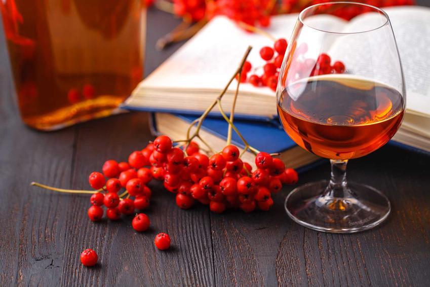 Wino z jarzębiny w kieliszku oraz sok z jarzębiny i jarzębina czerwona, a także jej właściwości lecznicze i przepisy