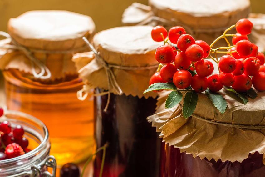 Konfitury z jarzębiny lub marmolada z owoców jarzębiny z jabłkami w słoikach oraz najlepsze przepisyi sposoby na przetwory z jarzębiny jadalne