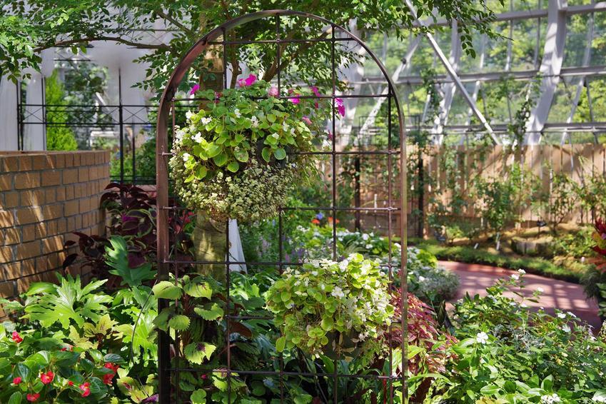 Oranżeria ogrodowa z kwiatami, czyli szklarnie ogrodowe oraz projekty oranżerii i budowa oranżerii dla roślin egzotycznych