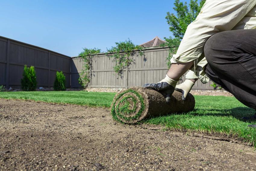 Układanie trawy w ogrodzie przez mężczyznę oraz trawa z rolki na trawnik rolowany, a także cena i zalety trawnika z rolki