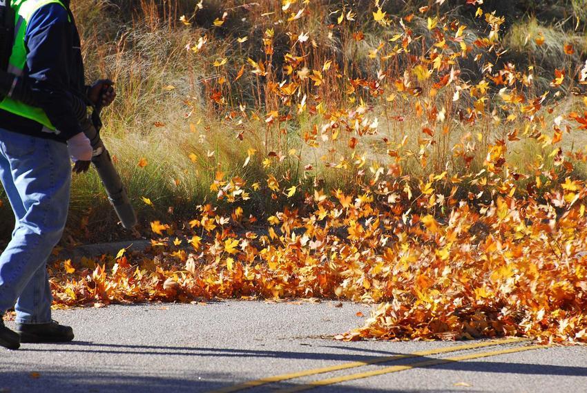 Dmuchawa do liści podczas użycia przez mężczyznę w ogrodzie oraz polecane dmuchawy w liści, w tym dmuchawa spalinowa