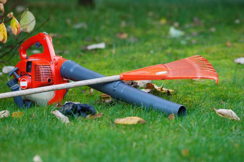 Dmuchawa do liści i grabie w ogrodzie oraz polecane rodzaje dmuchawy do liści, w tym dmuchawa spalinowa - opinie