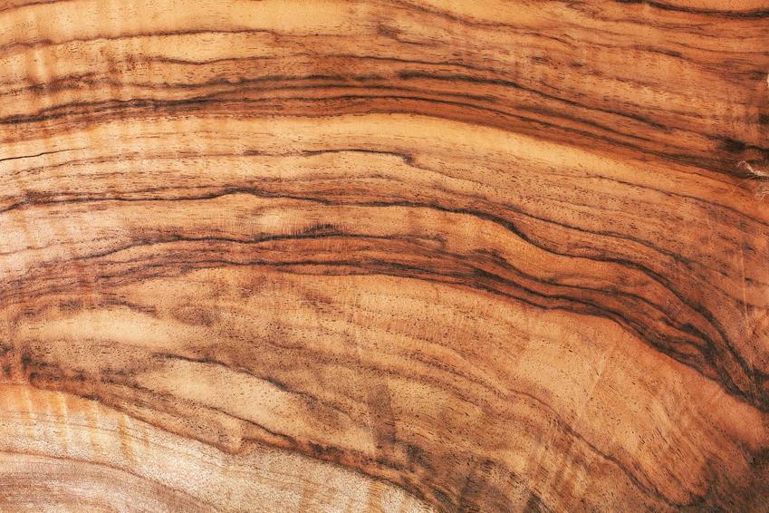 Drewno egzotyczne i rodzaje drewna egzotycznego, czyli pogłodi z drewna egzotycznego i tarasy z drewna - porady