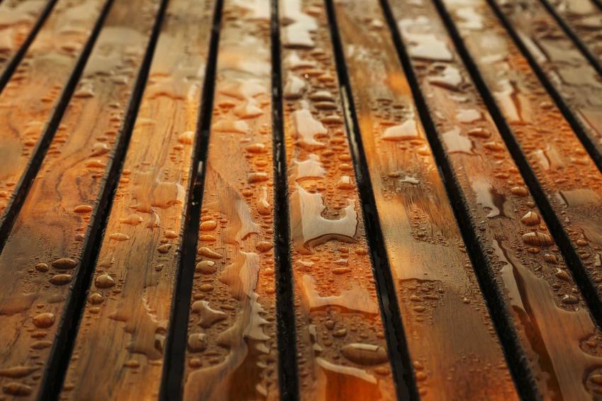 Drewno egzotyczne i rodzaje drewna egzotycznego, czyli wykorzystanie drewna egzotycznego w domu, na tarasach i balkonach