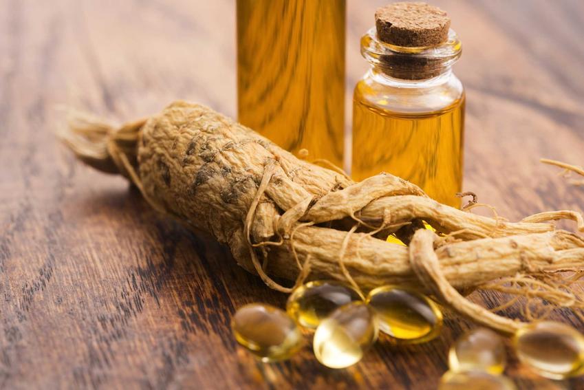 Żeń-szeń syberyjski w korzeniu i kapsułkach oraz działanie żeń szenia syberyjskiego oraz uprawa i właściwości zdrowotne