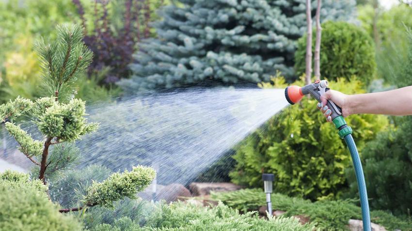 Wąż ogrodowy czy też szlauf ogrodowy do podlewania w czasie użycia oraz rodzaje, wykorzystanie oraz polecane węże ogrodowe