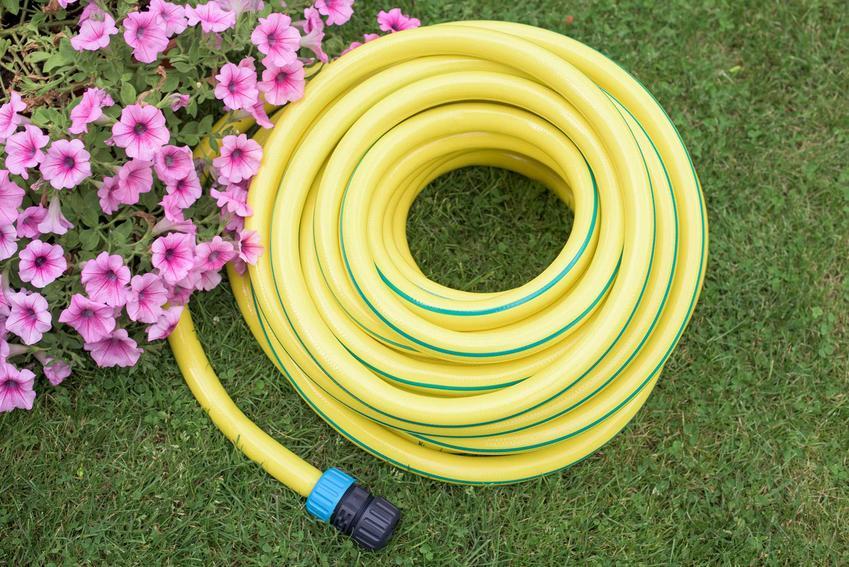 Zwinięty żółty wąż ogrodowy czy też szlauf ogrodowy do podlewania, rodzaje, wykorzystanie oraz polecane węże ogrodowe