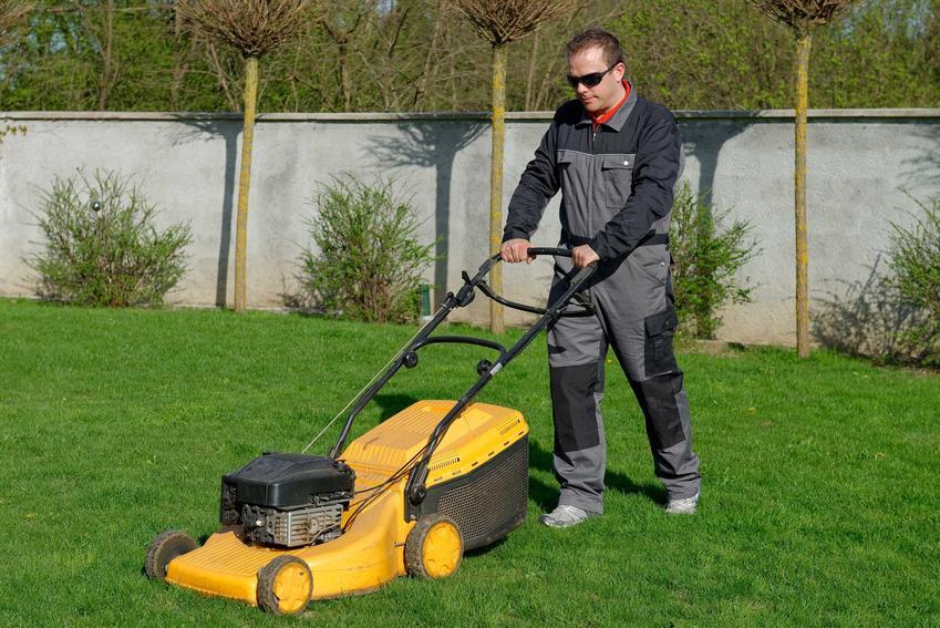 Kosiarka spalinowa do trawy obsługiwana przez mężczyznę podczas koszenia oraz polecane kosiarki spalinowe, modele i producenci