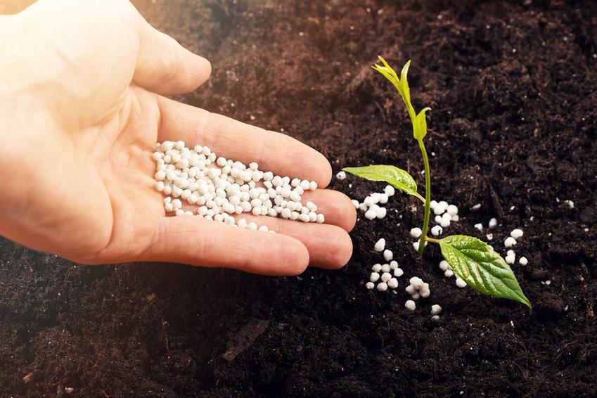 Nawóz azofoska jako granulat podczas nawożenia oraz jego zastosowanie i dawkowanie do różnych rośliny