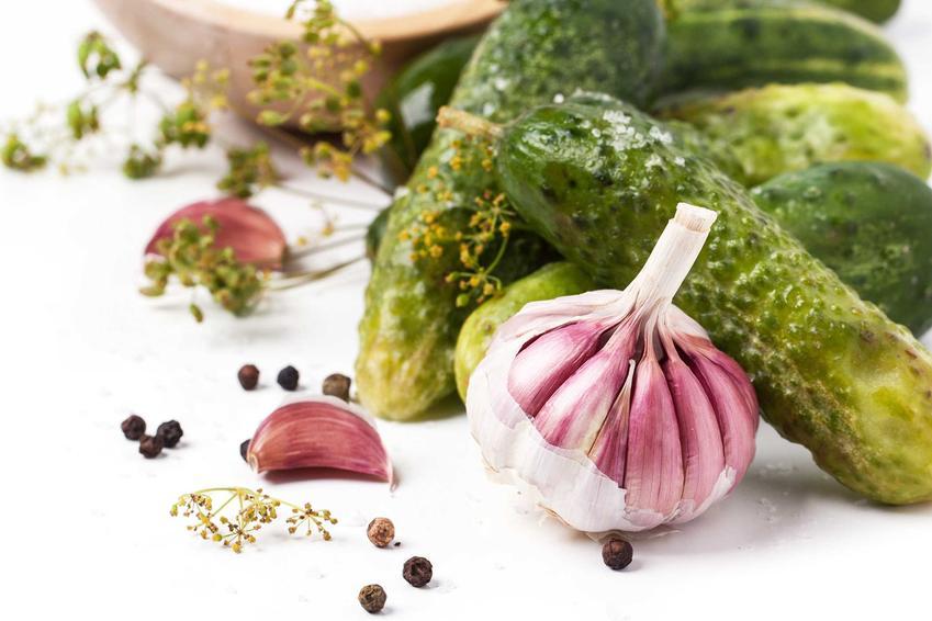 Ogórki kiszone z czosnkiem oraz sprawdzone i najlepsze przepisy na przetwory z ogórków z czosnkiem do słoików na zimę