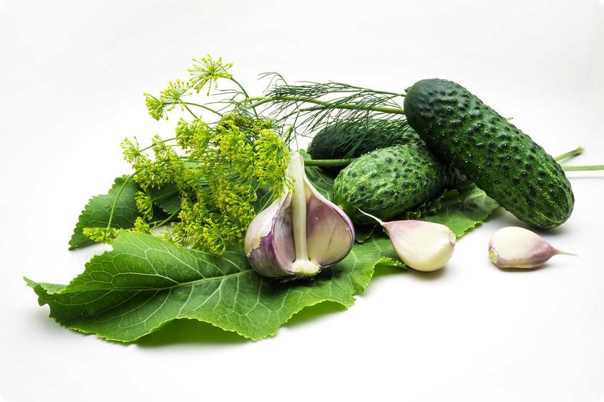 Kiszone ogórki z czosnkiem i koprem oraz sprawdzone i najlepsze przepisy na przetwory z ogórków z czosnkiem do słoików