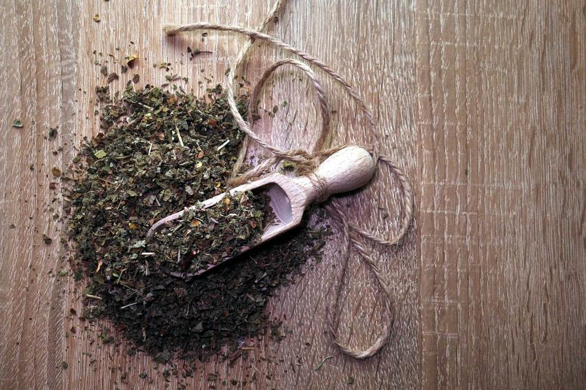 Suszony czystek, czyli herbata z czystka i czystek na odchudzanie oraz jego właściwości odchudzające i oczyszczające