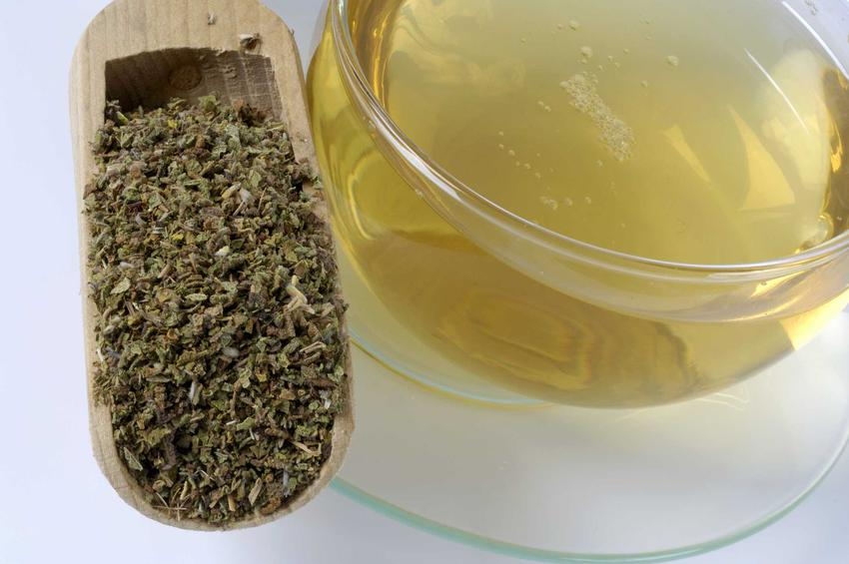 Czystek suszony i herbata z czystka oraz opinie o czystku, czyli na co pomaga czystek i czy ma działanie odchudzające