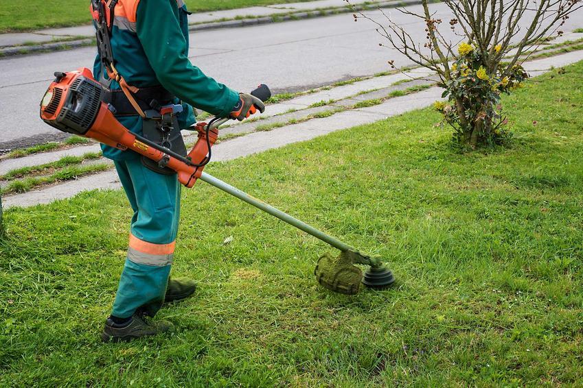 Podkaszarka spalinowa czy też wykaszarka spalinowa podczas koszenia trawy przez mężczyznę i polecane podkaszarki spalinowe