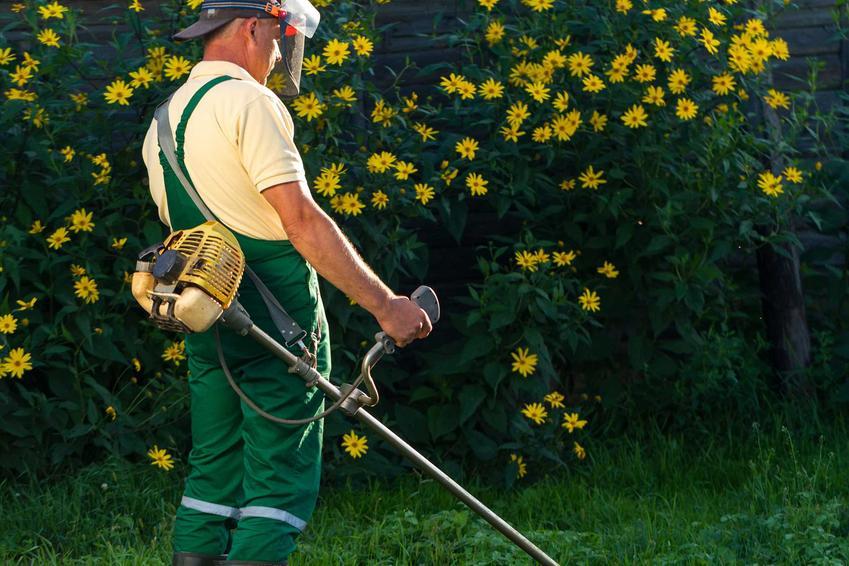Mężczyzna podczas koszenia trawy oraz podkaszarka spalinowa czy też wykaszarka spalinowa i polecane podkaszarki spalinowe