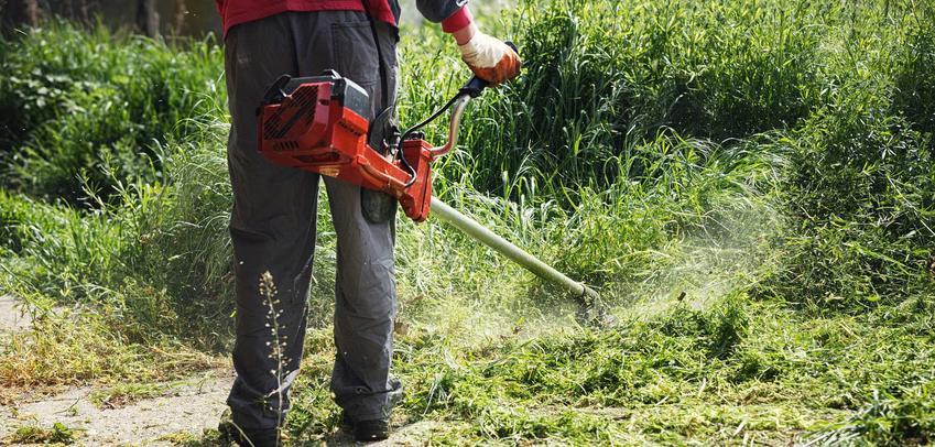 Porady na temat wyboru podkaszarek czy też wykaszarek do trawy do użytku domowego, opinie, polecane modele, wykorzystanie