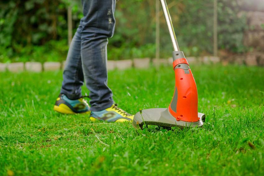 Podkaszarka elektryczna na trawniku, jej wady i zalety, a także podkaszarki spalinowe i podkaszarki elektryczne a opinie na ich temat