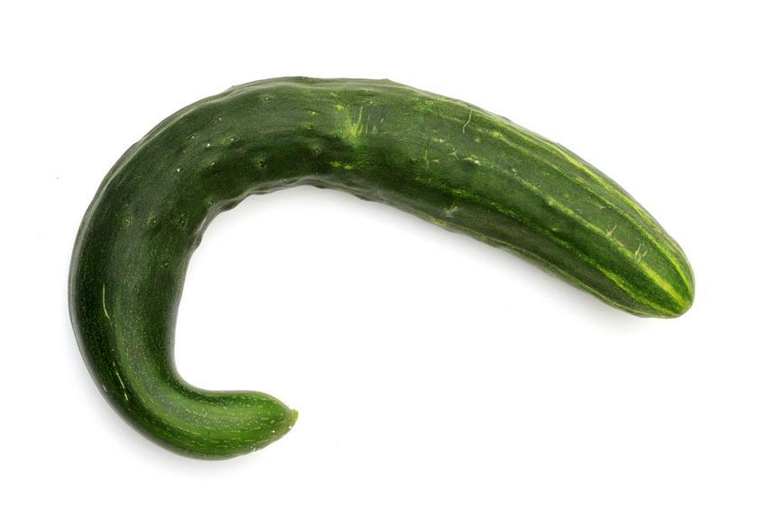 Ogórki wężowe chinese slangen jako jedna z ciekawszych odmian ogórków oraz ich uprawa i pielęgnacja w ogrodzie