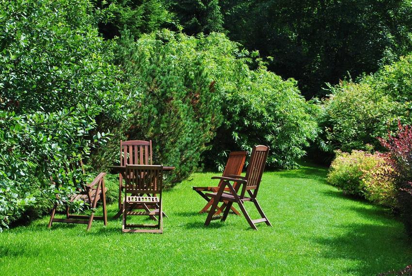 Aranżacja i organizacja rabat w ogrodzie to usługa, którą mogą wykonać profesjonalni ogrodnicy. Urządzenie ogrodu obejmuje także wybór odpowiednich roślin.
