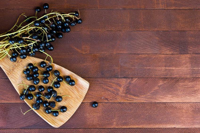 Owoce czeremchy na drewnianej desce oraz przepis na wino z czeremchy domowej roboty, składniki i wykonanie