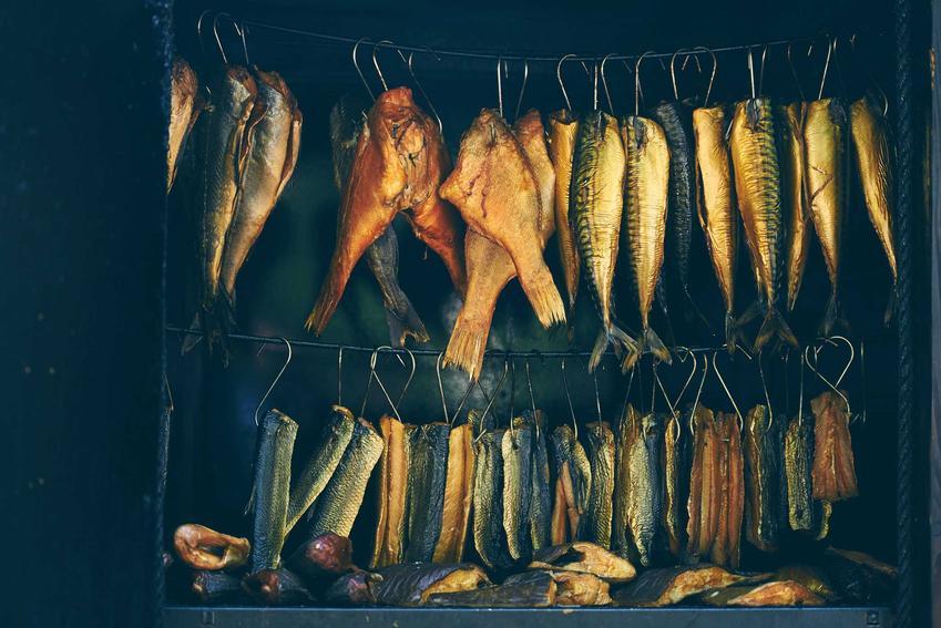 Ryby podczas wędzenia, czyli czas wędzenia i temperatura najlepsza do wędzenia ryb oraz różnego rodzaju mięs