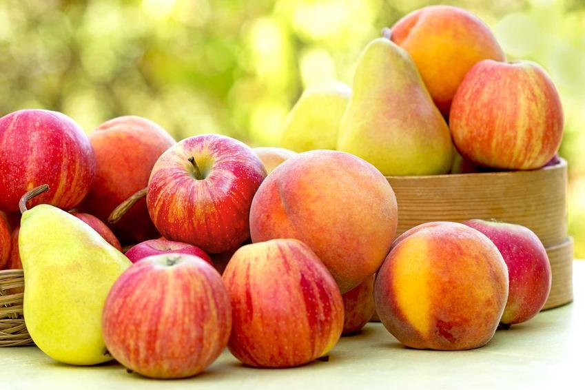 Jabłka i gruszki na kompot z jabłek i gruszek oraz przepis na kompot jabłkowy z dodatkami lub bez na zimę do słoików