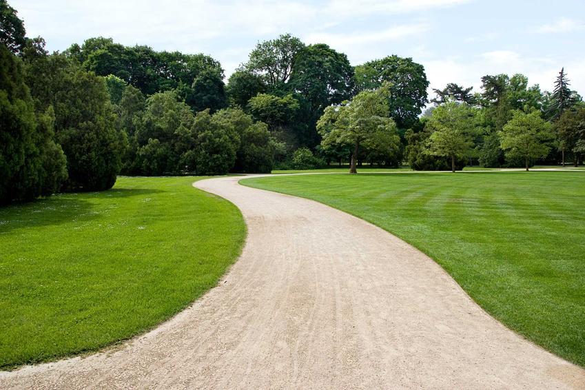 Piękny trawnika oraz mulczowanie trawnika, a także funkcja mulczowania w kosiarce - zalety i właściwości mulczowania - porady