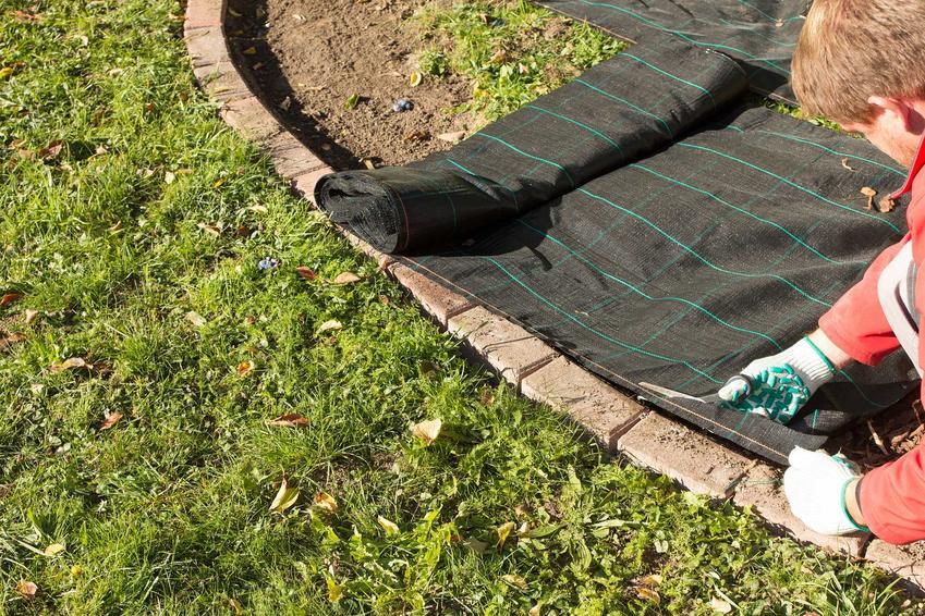 Włóknina ogrodowa podczas rozkładania oraz zastosowanie agrowłókniny, jej właściwości i rodzaje oraz sposoby rozkładania
