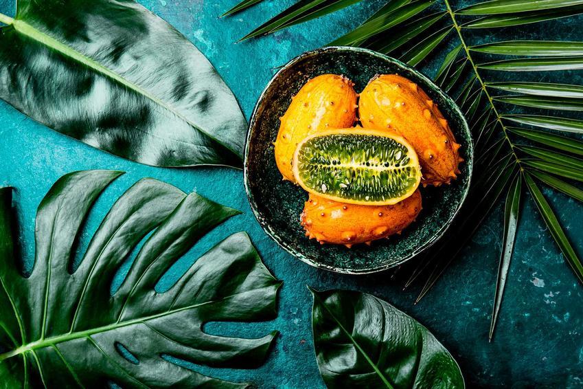 Ogórek kiwano jako egzotyczny owoc lub ogórek afrykański oraz porady jak jeść kiwano, a także uprawa kiwano w naszych warunkach klimatycznych