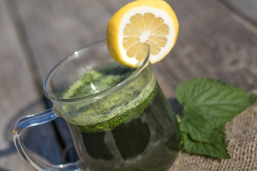 Świeży sok z pokrzywy z cytryną, a także syrop z pokrzywy oraz przepis na syrop oraz sok z pokrzyw, właściwości, działanie i dawkowanie