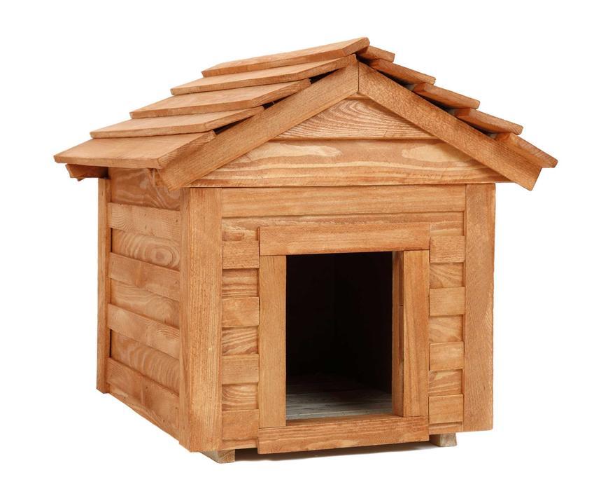Drewniana buda dla psa oraz porady, jak zrobić budę dla psa w ogrodzie krok po kroku, projekt i wykonanie prostej budy dla psa