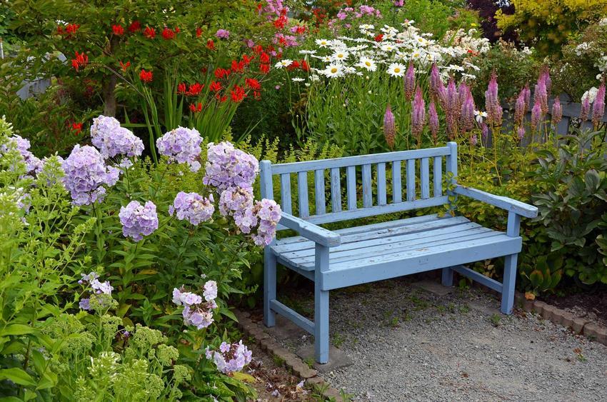 Drewniana ławeczka do ogrodu wśród kwiatów oraz ciekawe projekty i porady jak zrobić ławkę ogrodową - krok po kroku