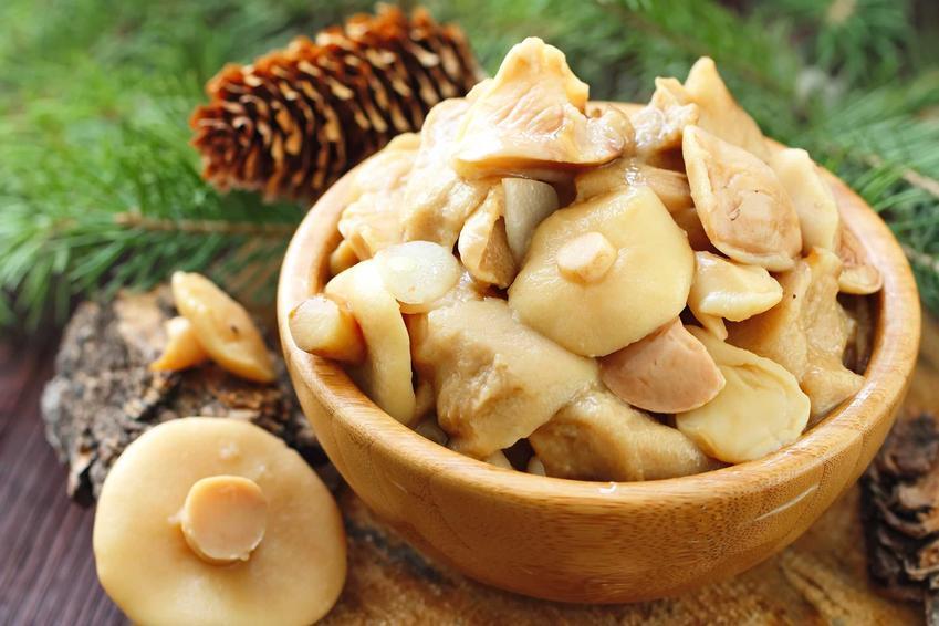 Grzyby marynowane i zalewa do grzybów marynowanych oraz porady, jak marynować grzyby w słoikach, najlepsze przepisy