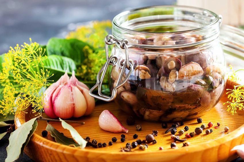 Grzyby marynowane i zalewa do grzybów marynowanych oraz porady, jak marynować grzyby do słoików na zimę