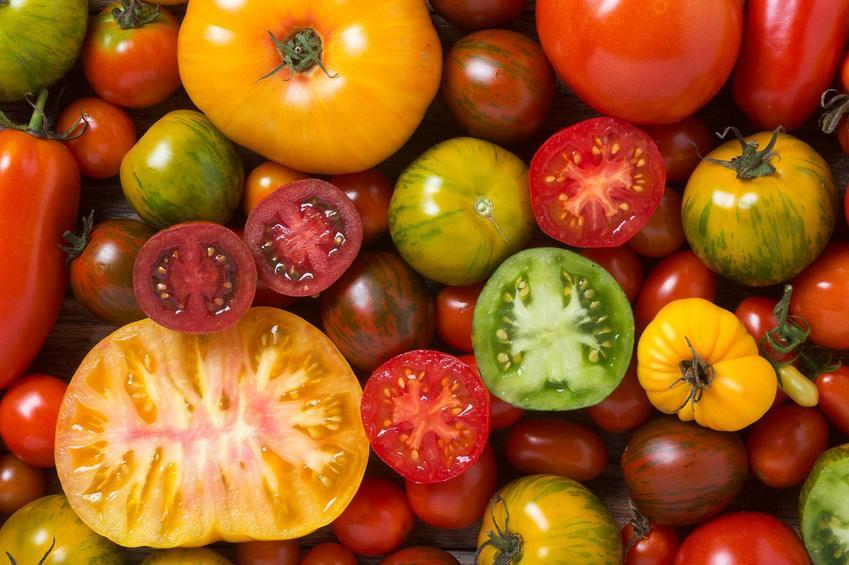 Pomidory w różnych kolorach - odmiany, warunki uprawy, pielęgnacja, a także wyjaśnienie kwestii, czy pomidor to owoc czy warzywo