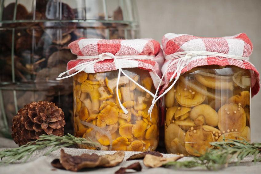 Marynata do grzybów oraz zalewa do grzybów, czyli przepis na grzyby w occie i grzybki marynowane w słodkiej albo ostrej zalewie