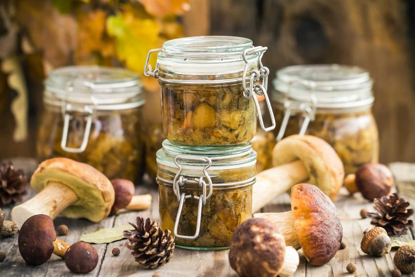 Grzyby marynowane w occie na słodko oraz pikantna zalewa do grzybów, a także przepis na grzyby w occie