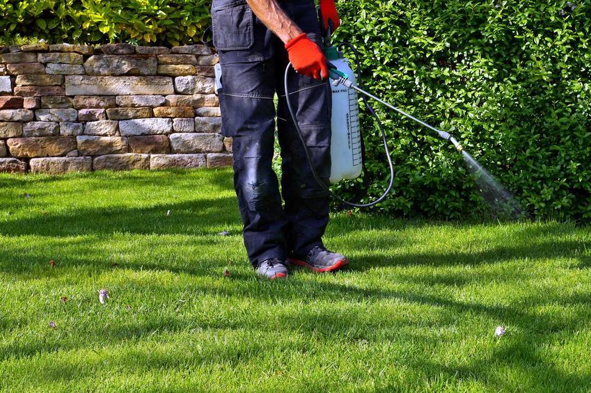 Oprysk na kleszcze, czyli opryski przeciw kleszczom i preparat przeciw kleszczom w ogrodzie - najlepsi producenci, marki, opinie