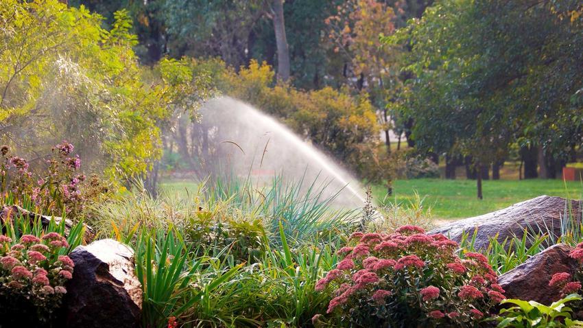 Nawadnianie ogrodu, w tym nadawnienie kropelkowe, nawadnianie trawnika czy podlewanie ogrodowe automatyczne krok po kroku