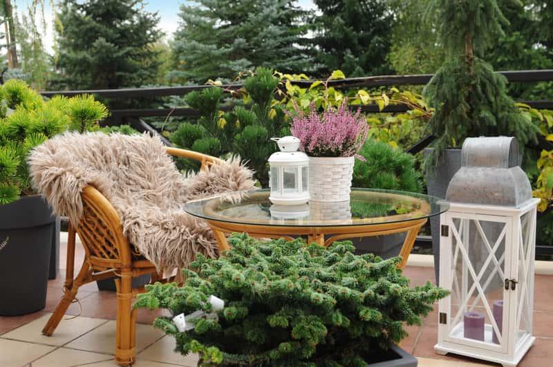 Aranżacja balkonu z meblami i roślinami, jak iglaki na balkon, a także najpiękniejsze iglaki do postawienia w doniczkach na balkonie