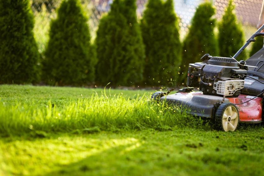 Koszenie trawy kosiarką w ogrodzie, czyli najlepsze sposoby na koszenie trawników