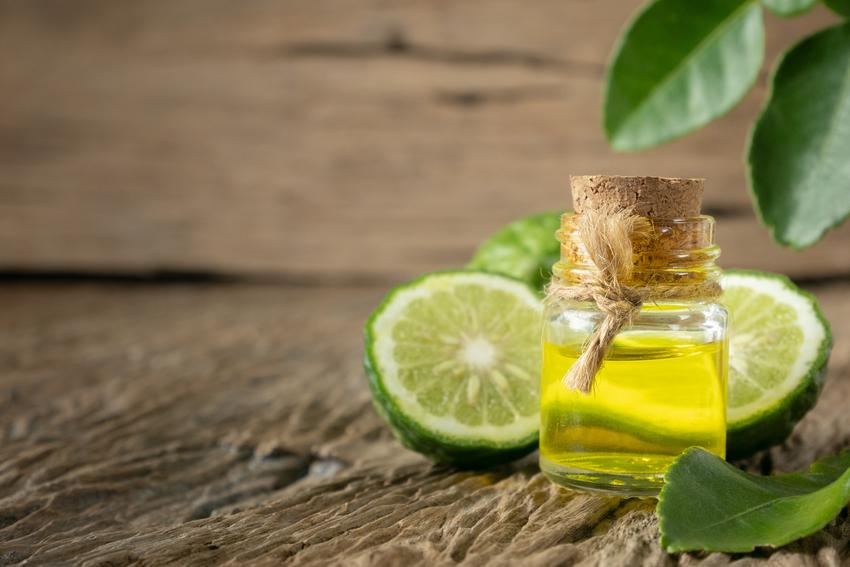 Pomarańcza bergamotka i jej uprawa oraz pielęgnacja, a także olejek z bergamotki i jego właściwości