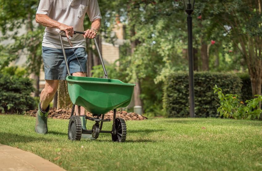 Mężczyzna podczas nawożenia trawnika siewnikiem, a także polecany siewnik do nawozu
